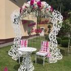 Свадебная арка Сказка, размер 250х230см