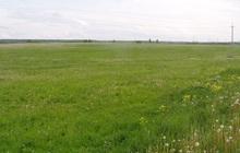 Продам земельный участок площадью - 14 Га в хуторе Ленинакан