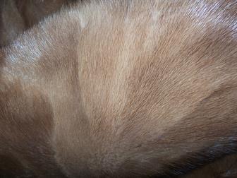 Просмотреть изображение  шуба норковая 37964298 в Ростове-на-Дону