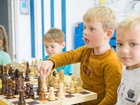 Скачать изображение Репетиторы Репетитор по шахматам 38717007 в Самаре