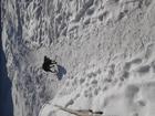 Смотреть фото Потерялись животные Маленькая черная собачка найдена, 57001684 в Самаре