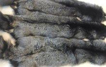 Шкурки чернобурки