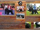 Изображение в Собаки и щенки Продажа собак, щенков От интер - мульти чемпионов, проверенных в Санкт-Петербурге 0