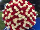 Увидеть изображение  101 роза на выписку из роддома 34338920 в Санкт-Петербурге