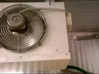 Изображение в Рыбки (Аквариумистика) Растения Холодильная машина для обеспечения температуры в Санкт-Петербурге 45000