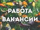 Foto в Работа для молодежи Работа для студентов 1 Промоутер в своем районе  _  Мы предлагаем: в Санкт-Петербурге 70000