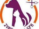 Просмотреть изображение  Стрижка собак и кошек на дому 37684639 в Санкт-Петербурге