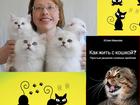 Свежее фотографию  Зоопсихолог, Специалист по коррекции поведения кошек 80553994 в Санкт-Петербурге
