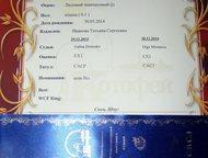 Санкт-Петербург: Петербургский сфинкс СПб! продается годовалая кошечка породы Петербургский сфинкс Голубка дель Ирис окрасом лиловая черепаха, привита, приучена на лот