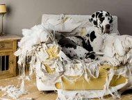 Ремонт, перетяжка, реставрация мягкой мебели Произведем высококачественный ремон