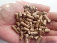 Производство топливных гранул (пеллет) с сушкой Продается производство топливных