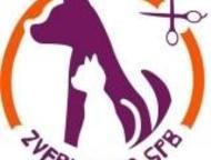 Стрижка собак и кошек на дому Профессиональный груминг в СПб у Вас дома, учтем В