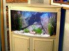 Фото в Рыбки (Аквариумистика) Уход за аквариумом Полный спектр услуг по обслуживанию аквариумов в Саратове 900