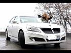 Скачать бесплатно foto  Аренда белого автомобиля на свадьбу 38755426 в Саратове
