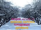 Фотография в   Компания, Ваш сад 24, предоставляет услуги в Серпухове 1000