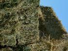 Фото в Домашние животные Корм для животных Покос сена Кавказа и Кубани 2016 в евробрикетах в Сочи 190