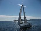 Скачать бесплатно foto  Морская прогулка и Морская рыбалка на парусной яхте 39088186 в Сочи