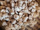 Просмотреть фото  Идеальный корм для собак без крахмала и аллергенов 69197755 в Сургуте