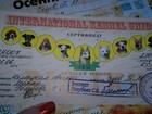 Увидеть фотографию Вязка собак Кобель для вязки! 37741020 в Таганроге