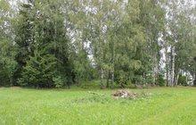 Земельный участок на Дмитровском шоссе 90 км, от Москвы