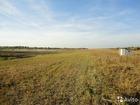 Скачать фото  Продам земельный участок с хозпостройкой 38316616 в Тамбове