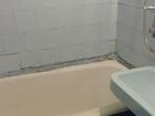 Просмотреть фото  сдам 2-х комнатную на длительный срок 67852391 в Тюмени