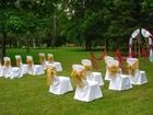 Увидеть фото  Площадка для выездной регистрации на природе в парке 53191681 в Томске