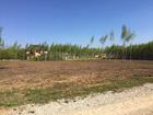 Новое изображение Агентства недвижимости Продается земельный участок 15 соток под ИЖС, 86 км от МКАД в КП Романовский парк 39293096 в Туле