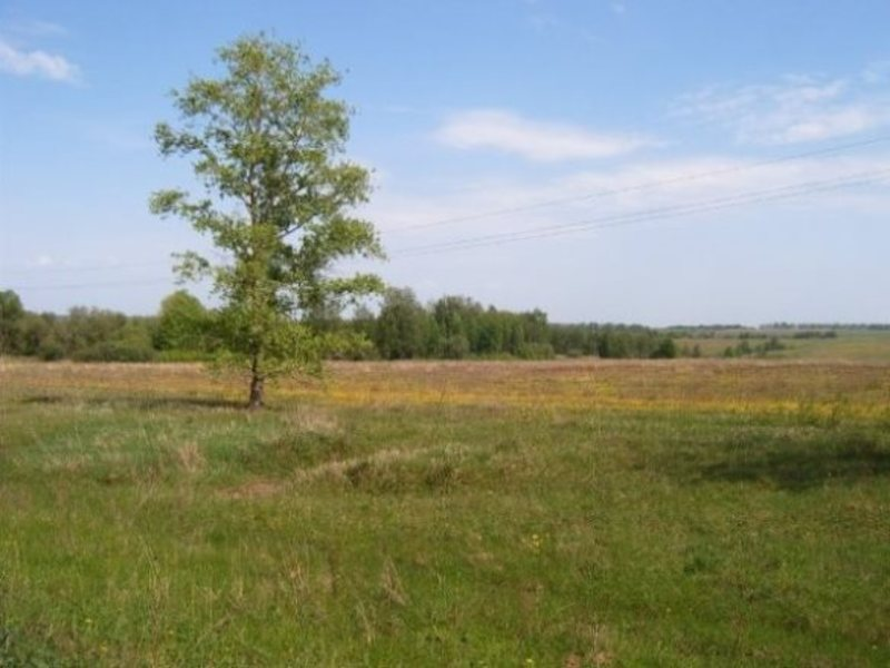 участок для сельского хозяйства в серпухове стальная плетеная (рабица)