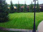 Фотография в Строительство и ремонт Ландшафтный дизайн В настоящее время рулонный газон — самый в Уфе 0