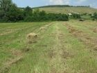 Изображение в   свежевыкошенное душистое сено с экологически в Ульяновске 70