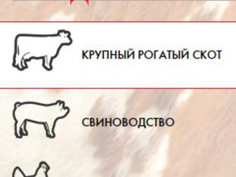 Скачать бесплатно изображение Корм для животных Purina корма и концентраты 34672652 в Владикавказе