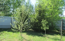 Участок под ИЖС в н, п, Загорье-38 соток в 5 км от Владимира