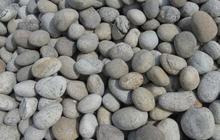 Камень голыш