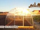 Скачать фотографию Разное Теплица Насон-Урожайная 3х8 38524084 в Вологде
