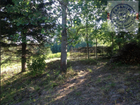 Продается земельный участок в Лукьяново. Садовое товариществ