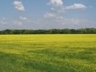 Продается земельный участок 12 соток под ИЖС в границах горо