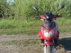 Изображение в Авто Скутеры Продам Скутер Racer lupus rc50qt-9c по документам в Воронеже 24000
