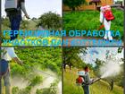 Уникальное изображение  Гербицидная обработка от сорняков, Уничтожение сорняка, 60981815 в Воронеже