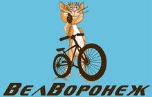Продам велосипеды stels и другие