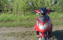 Скутер Racer lupus rc50qt-9c
