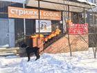 Фото в Собаки и щенки Стрижка собак Cалон для собак и кошек «ГАВ и МЯУ» это второй в Зеленограде 1300