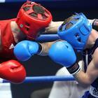Зеленоград спортивный, Школа бокса в Зеленограде