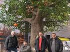 Фотография в Строительство и ремонт Ремонт, отделка Выполняем художественно-декоративны еработы в Москве 0